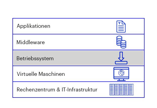 IT-Outsourtcing, horizontaler Leistungsschnitt
